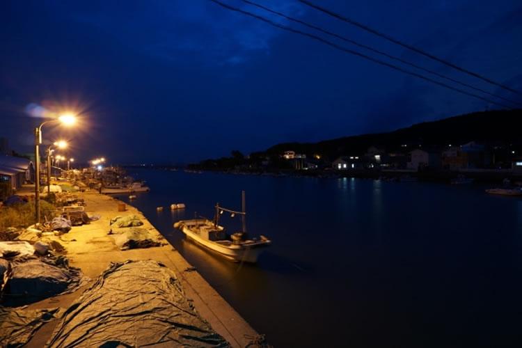 夜は河口や漁港などにもヒラスズキが入ってくる