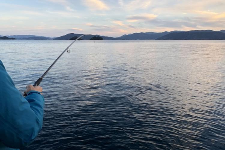 ロッド操作で魚を誘導する