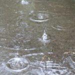 雨やくもりの日はシーバスが釣れやすい理由