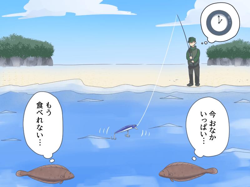 ヒラメが釣れる可能性の高い時間に釣りをしていない