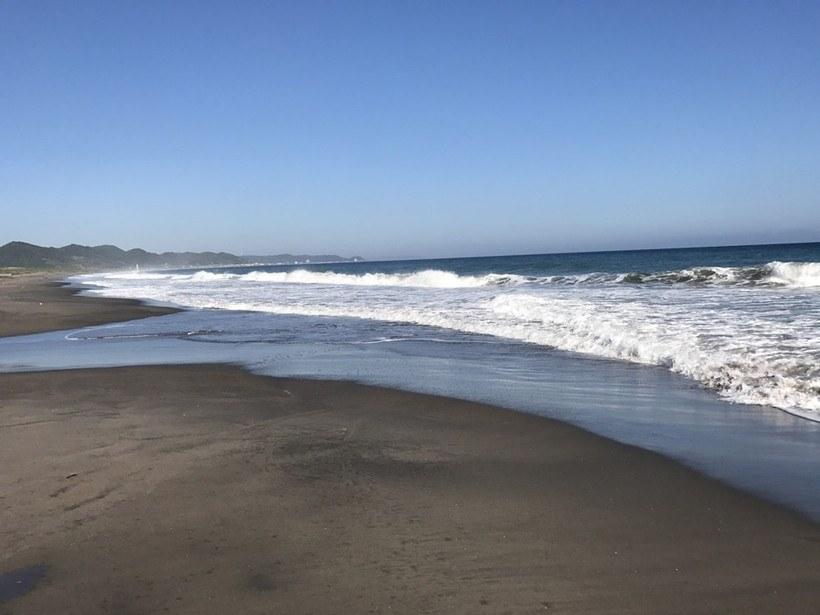 サーフ(海岸)