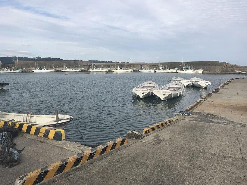漁港内でヒラメやマゴチを狙うメリット