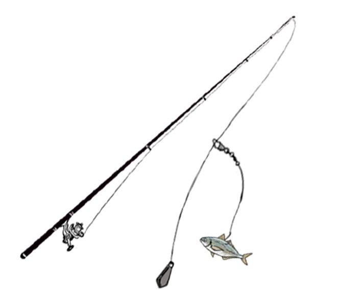 全9種類の泳がせ釣り用の仕掛け – 釣りの教科書