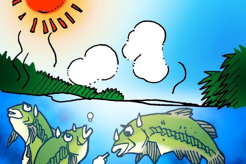 夏は水中の溶存酸素量を考えることもバス攻略には必要