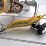 アオリイカの釣り方を学べるエギング動画