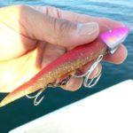 シーバスの釣れるワームの基本