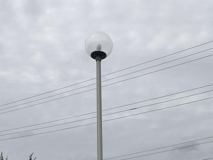 常夜灯のまわりを狙う