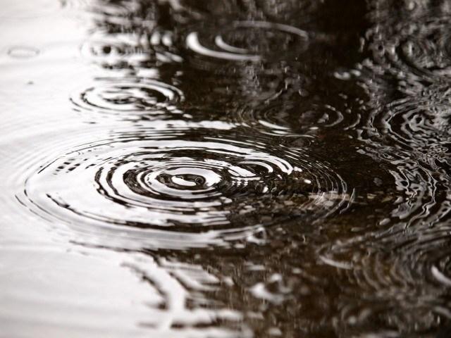 ヒラメやマゴチは雨や曇りの日の方が釣れる
