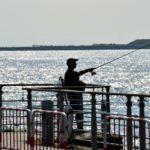 シーバスの釣り方をプロのアングラーから学べる動画