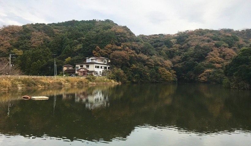 野池の中央