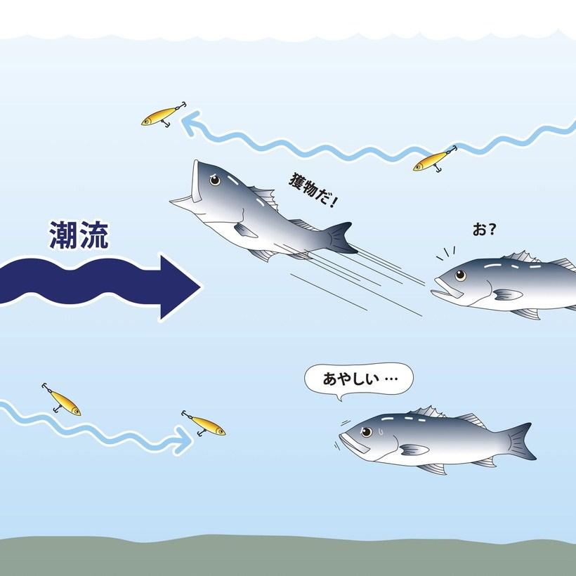 潮下から潮上に向かって歩く時が一番釣れやすい
