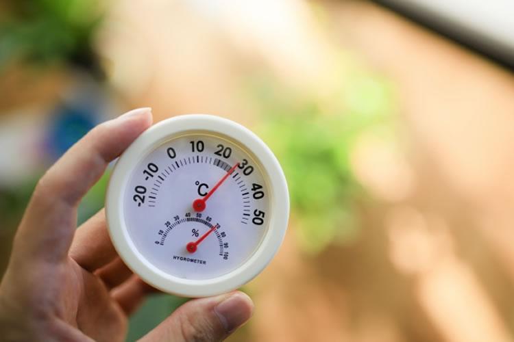 水温低下によりヒラスズキの活性が上がる