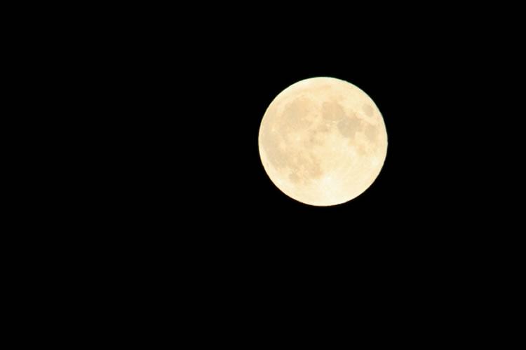 満月の夜はサーフでも釣れやすい