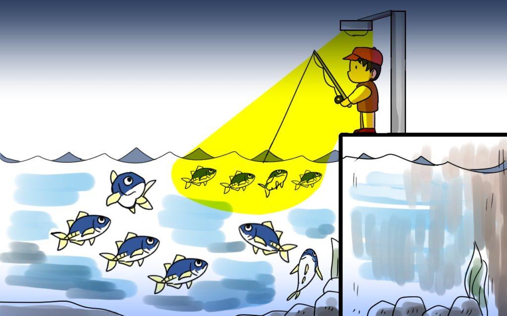 アジが釣れる!アジングの王道ポイント