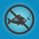アジングでアジが釣れない原因と対策